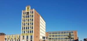 SPD und AmpelPlus unterstützen soziales Engagement im Satellitenviertel